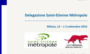 Delegazione Saint-Etienne Metropole