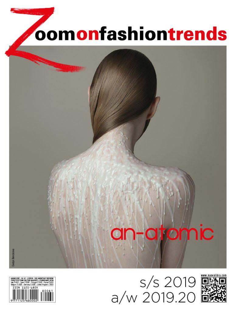 Z61 cover